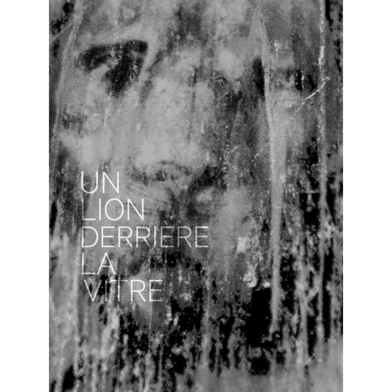 Image of  UN LION DERRIÈRE LA VITRE