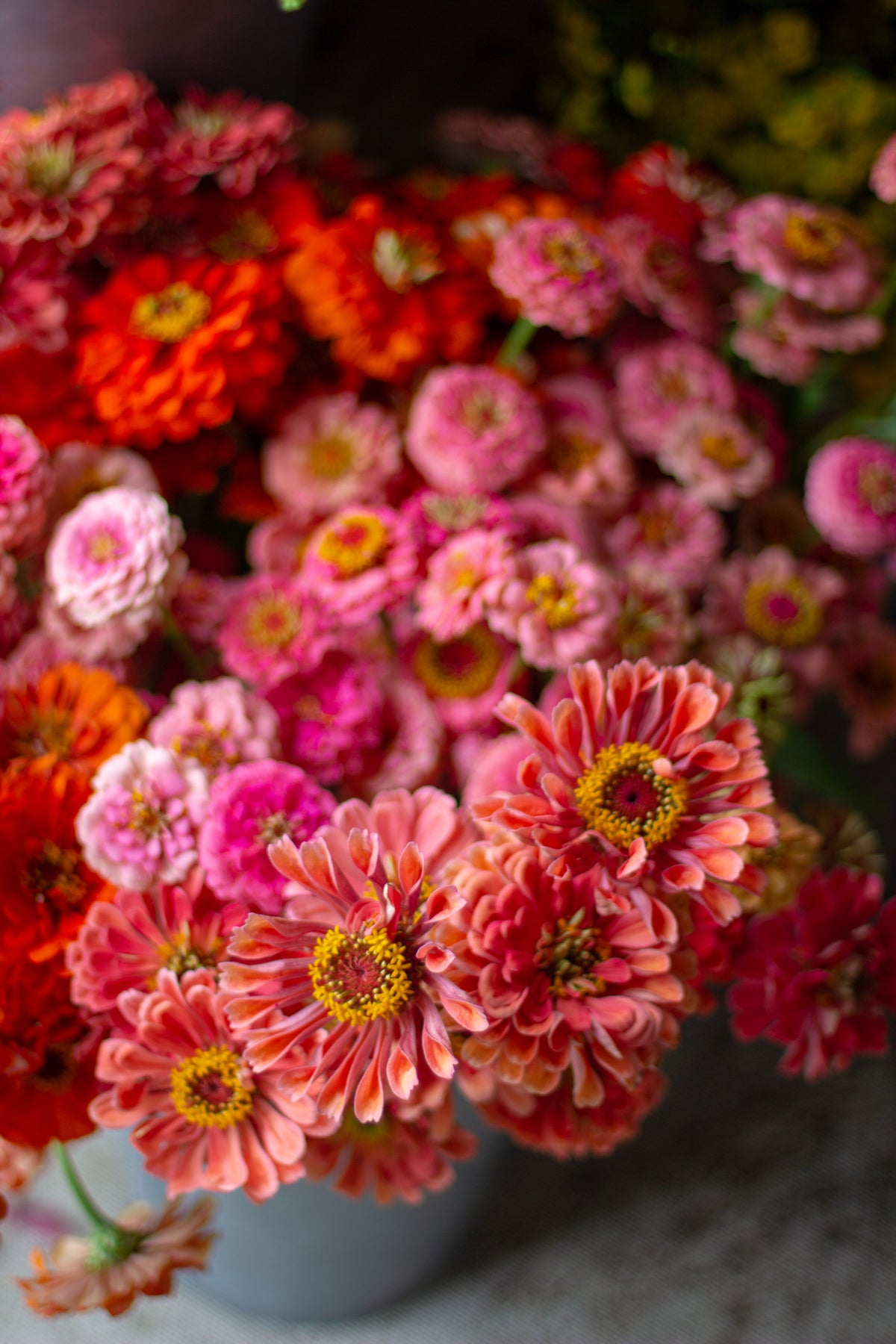 Image of BACKYARD BOUQUETS: Learn to Grow Your Own!