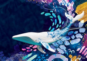 Image of Whale - Art Print