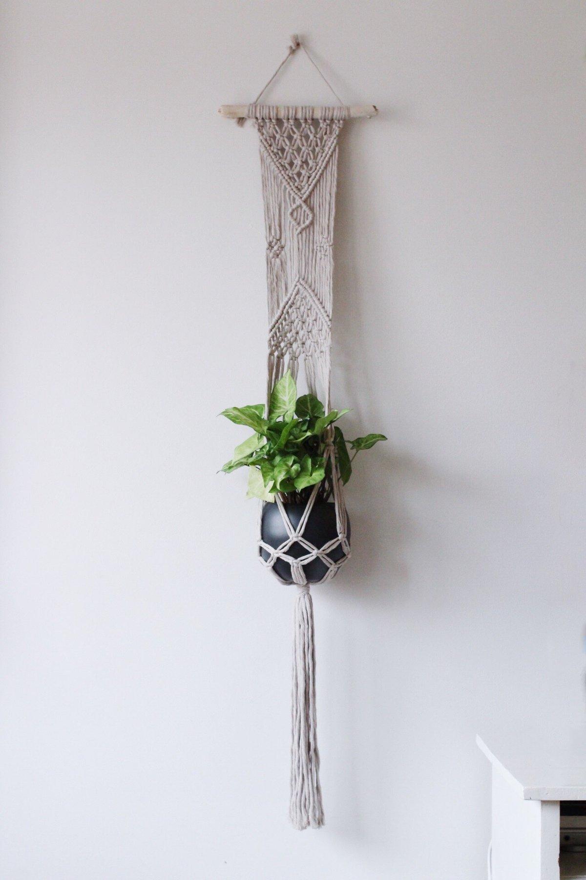 Image of Boho Plant Hanger