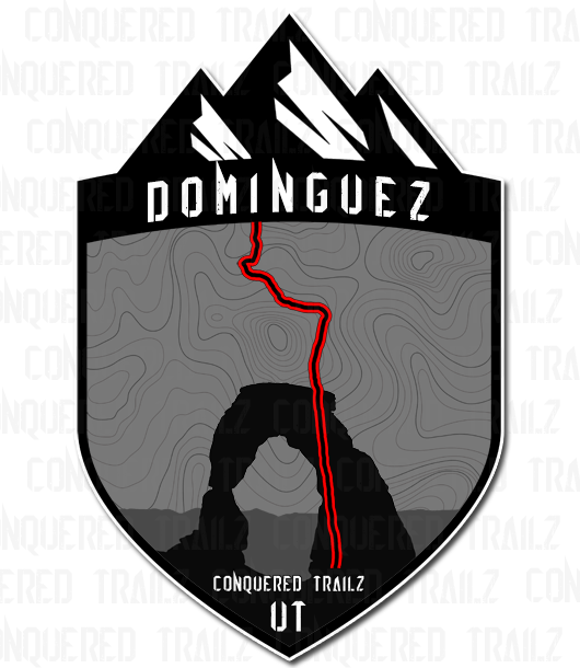 "Image of ""Dominguez"" Trial Badge"