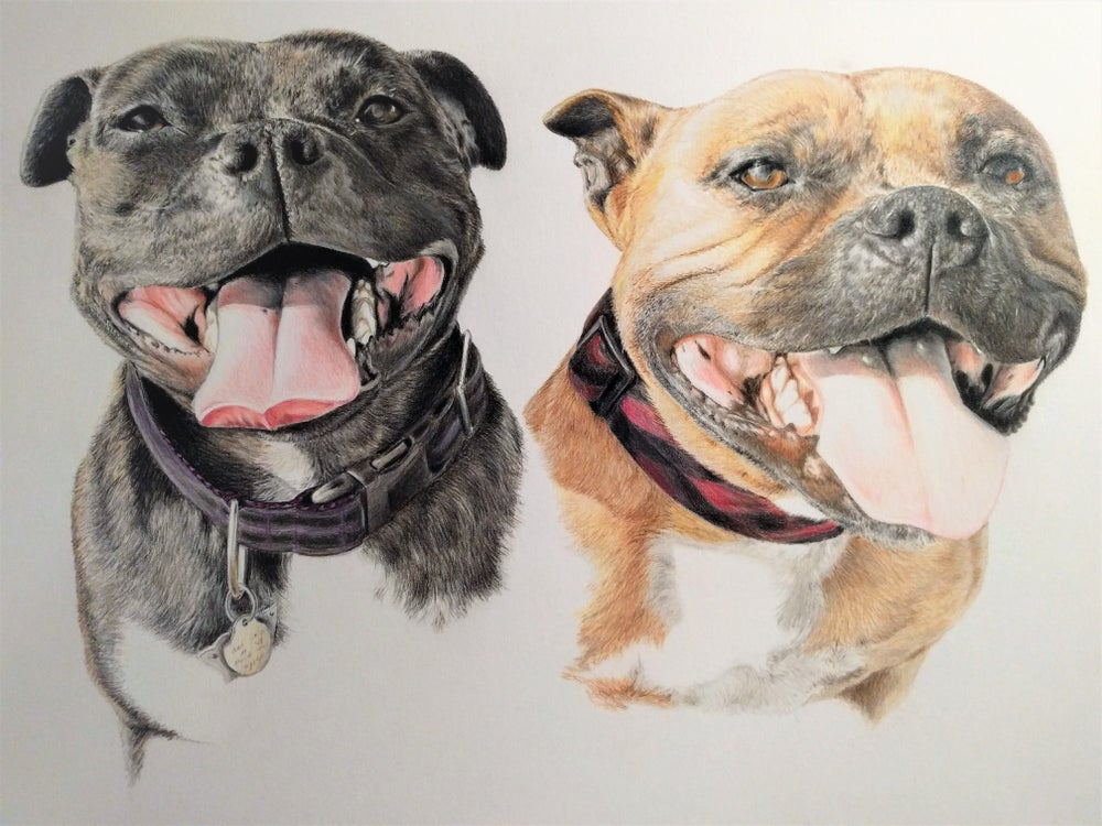 "Image of Custom Pet Portrait of 2 or more Pets 11""x14"""