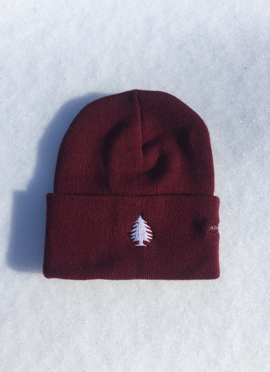 Image of ZooMass Beanie