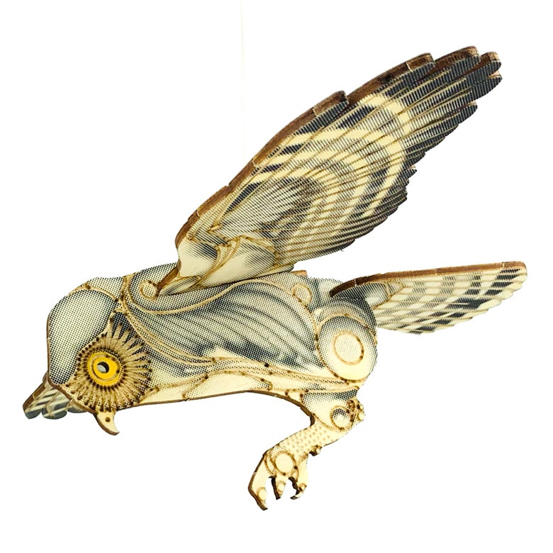 Image of JCR BIRDS : ELF OWL