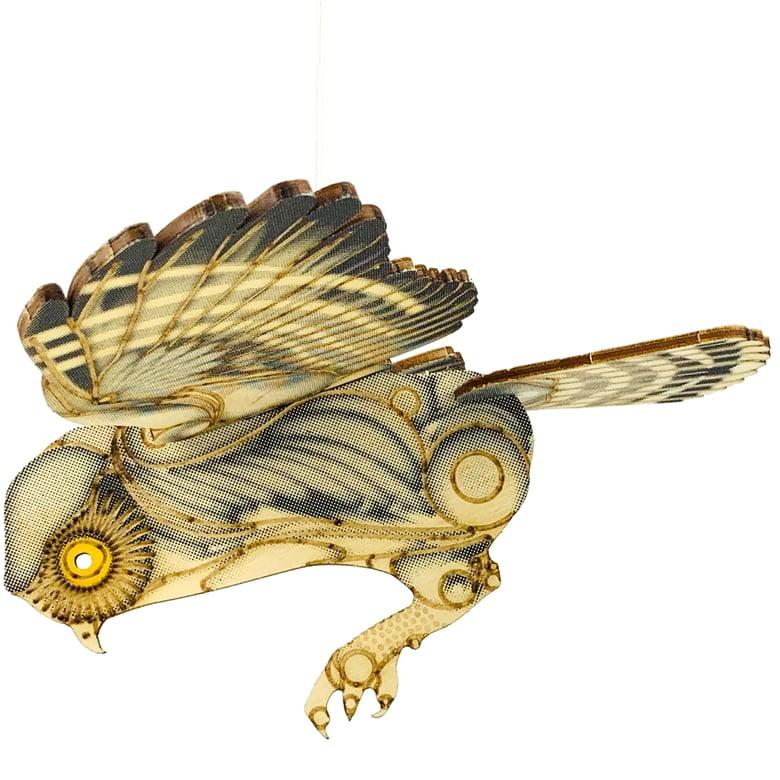 Image of JCR BIRDS : ELF OWL