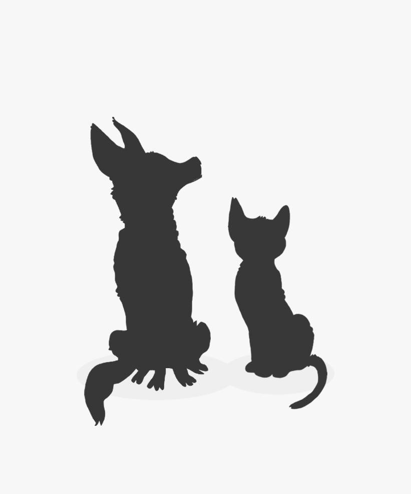 Image of Extra Pet