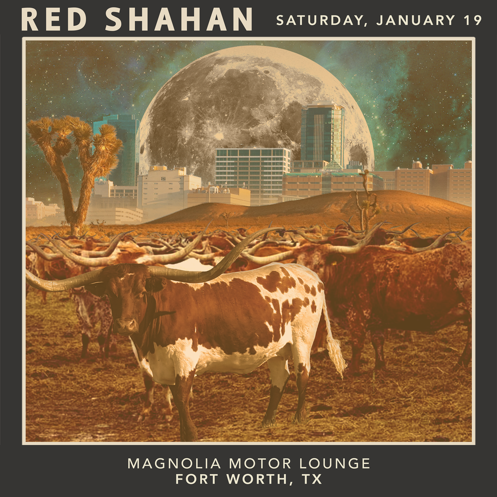 Image of Limited Edition Tour Poster- Magnolia Motor Lounge- 1/19/19