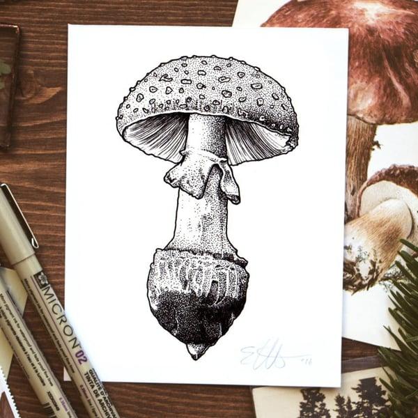 Image of Mushroom Print
