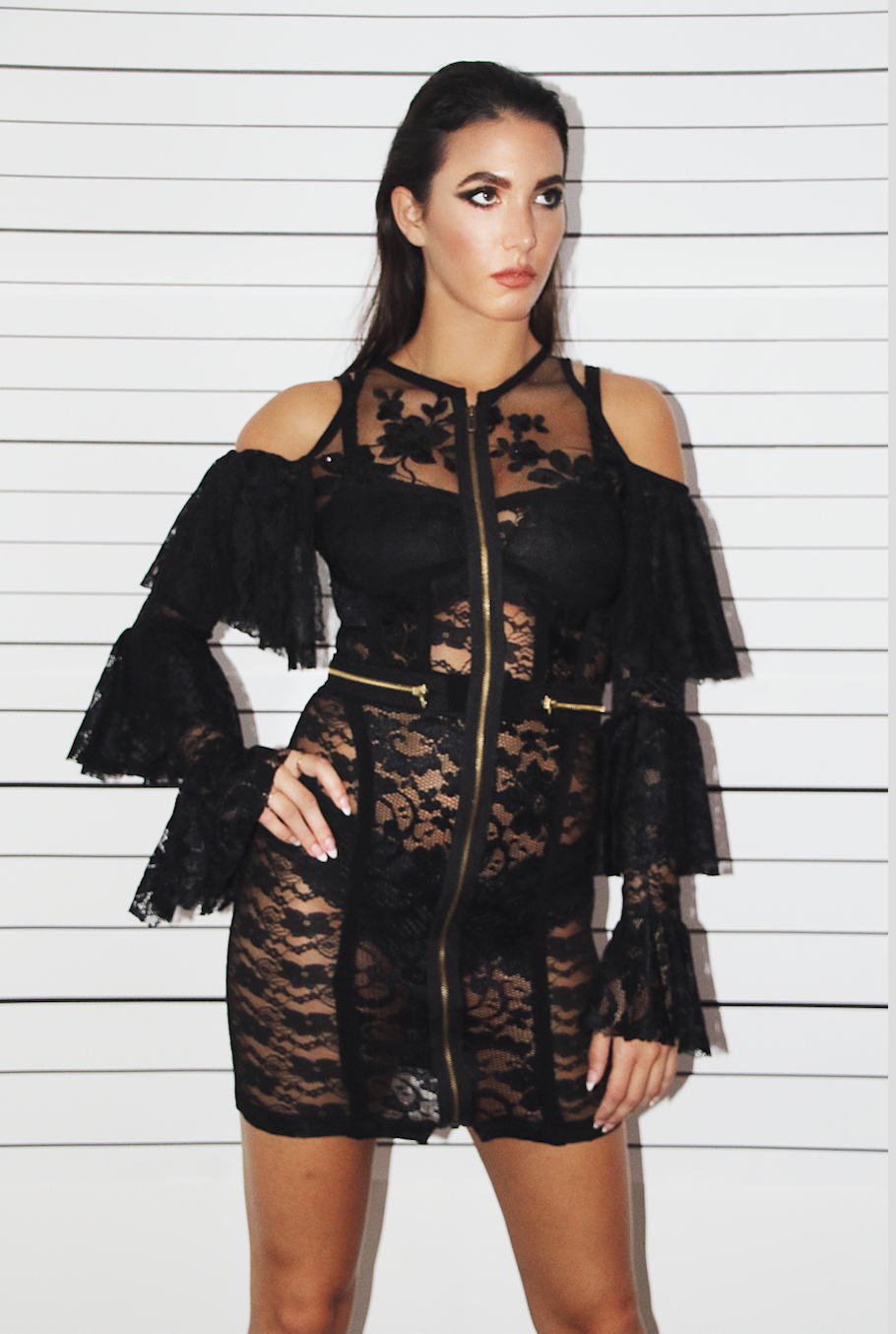Image of Lace Zip Dress
