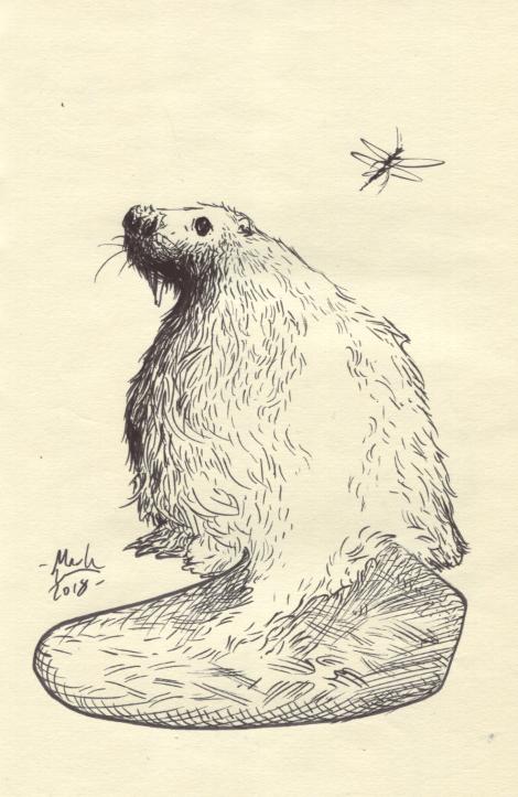 Image of Beaver inked art piece
