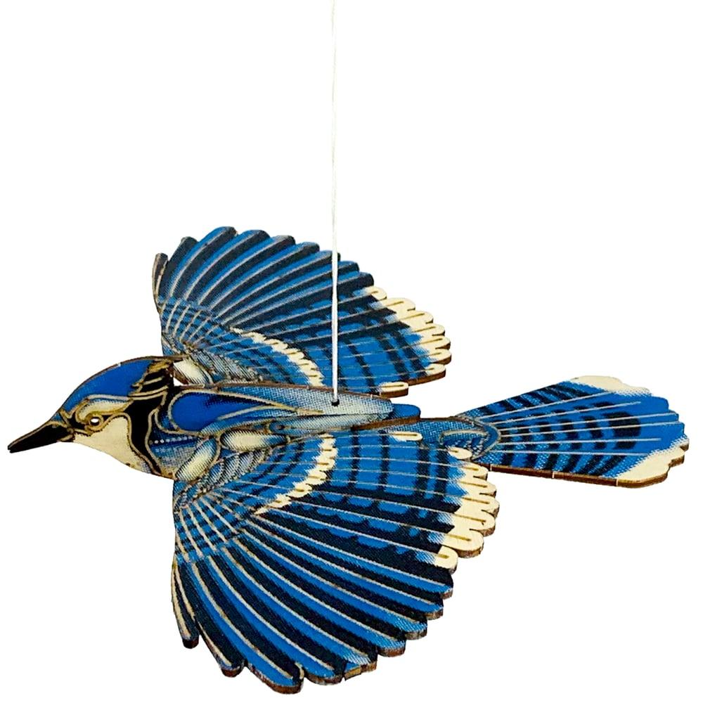 Image of JCR BIRDS : BLUE JAY