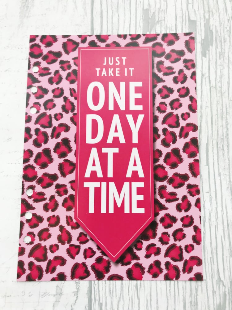 Image of A5 FOOD DIARY ORGANISER INSERT ONE DAY AT A TIME