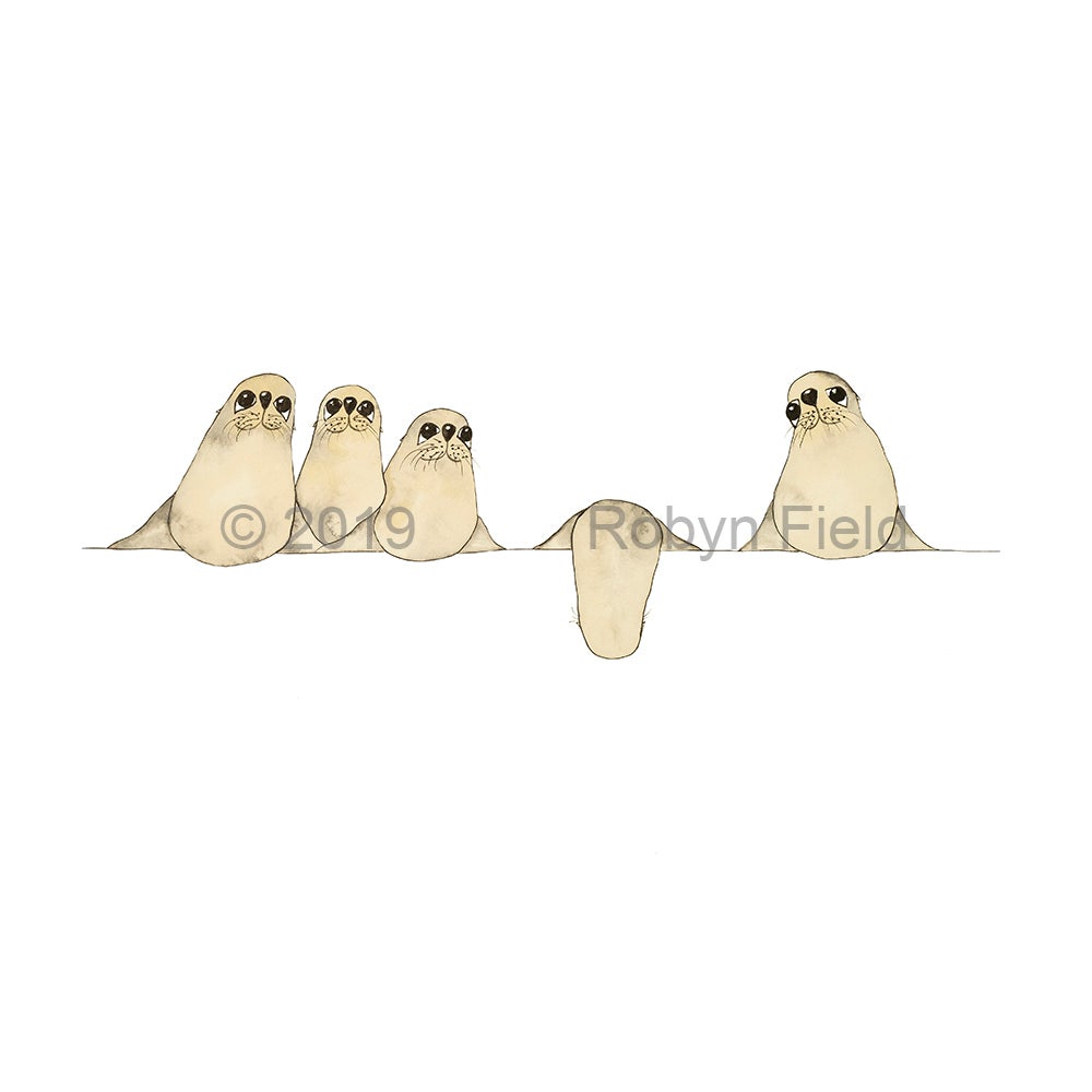 Image of Australian Artwork Print - Seals on a wire