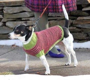 Image of Knit PDF - A Dog in Sheep's Clothing Dog Sweater Download