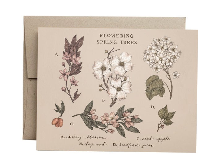 Image of Flowering Spring Trees Card