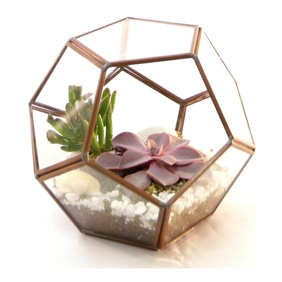 Image of Geometric terrarium prism copper