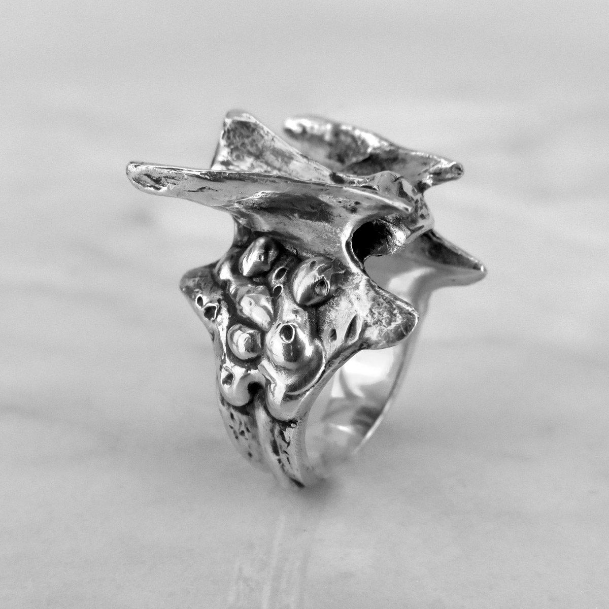 Image of Vertebra I Ring