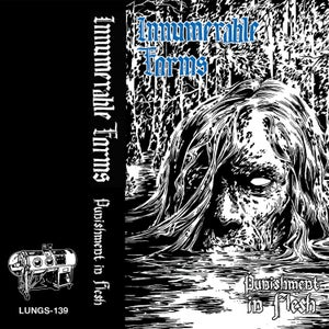 Image of INNUMERABLE FORMS - Punishment In Flesh CS [reissue]
