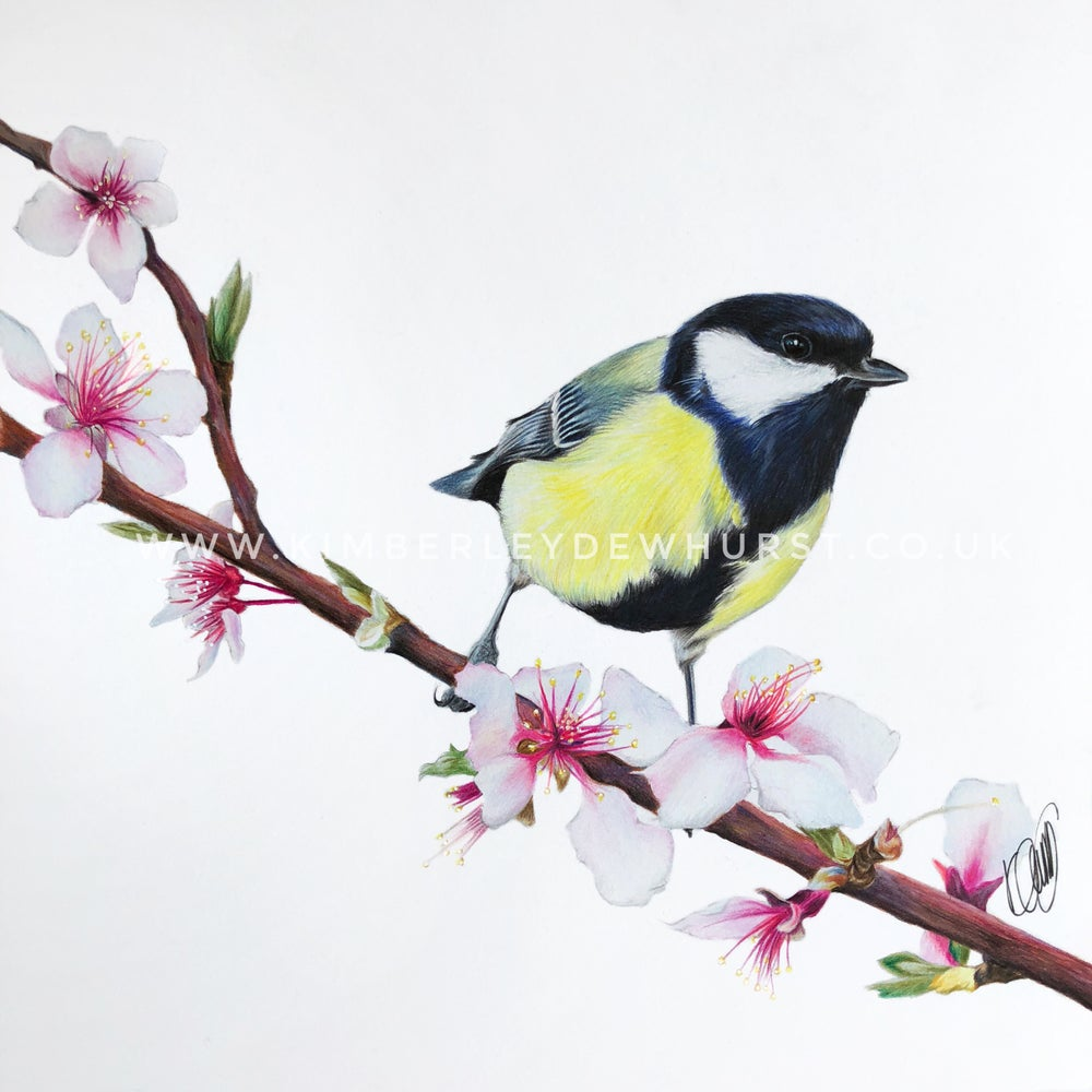 Image of 'Great Tit' Limited Edition Print