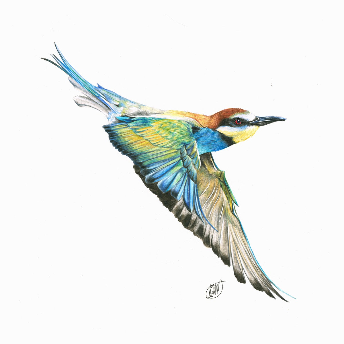 "Image of ""Bee-Eater"" Limited Edition Print"