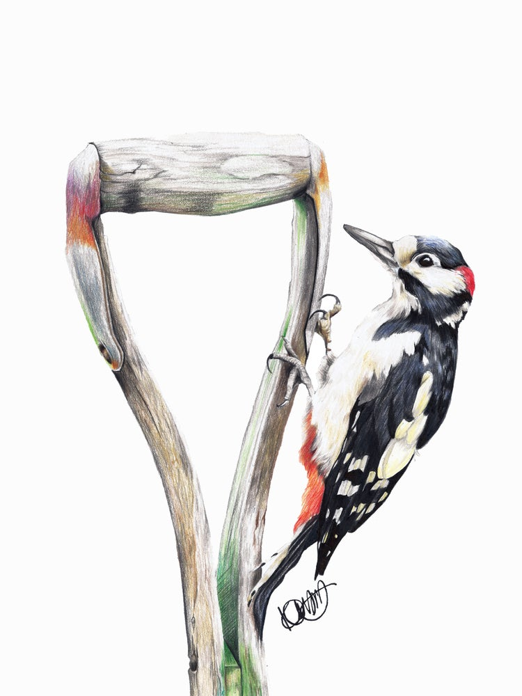 "Image of ""Gregory The Woodpecker"" Limited Edition Print"