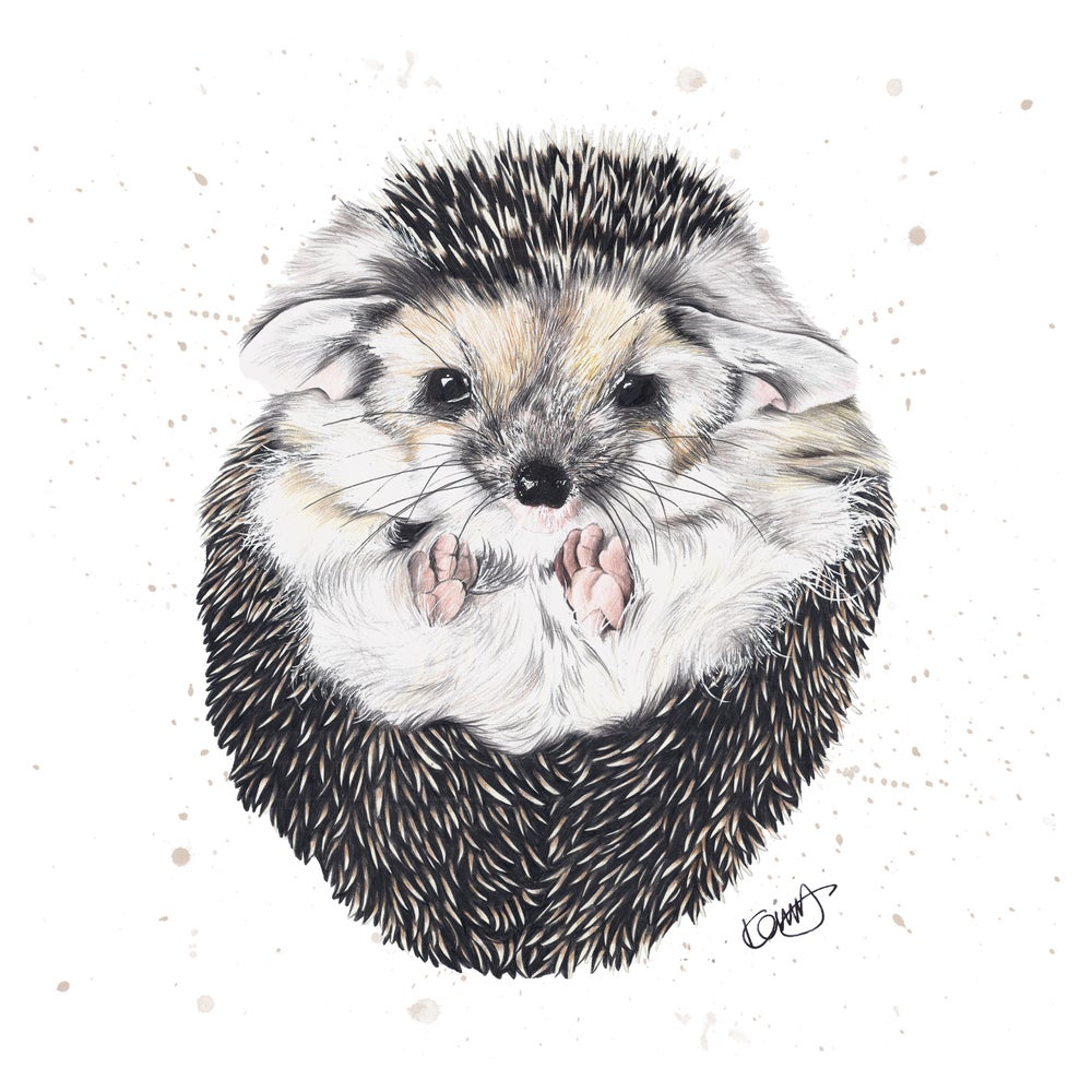 "Image of ""Primrose the Hedgehog"" limited Edition Print"