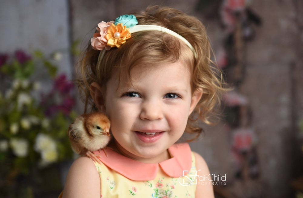 Image of Baby Chick Spring Session   March 23rd -30th