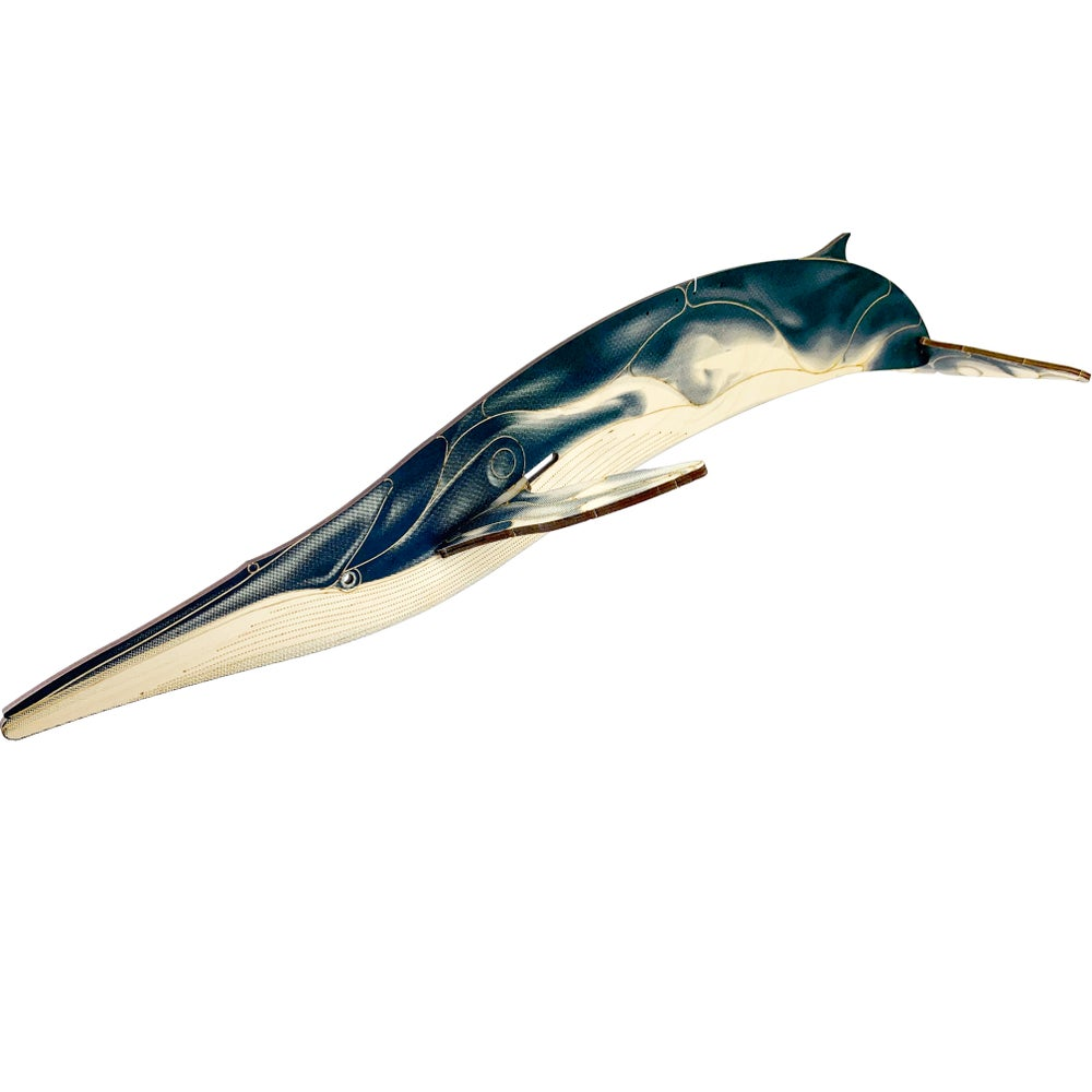 Image of JCR WHALES : FIN WHALE