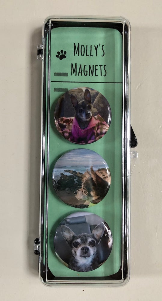 Image of MOLLY'S MAGNETS (B)