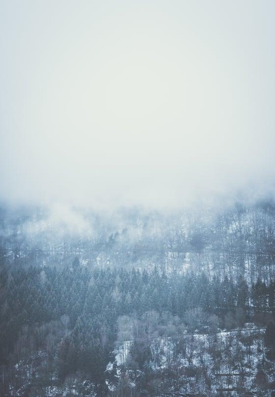 Image of Winter