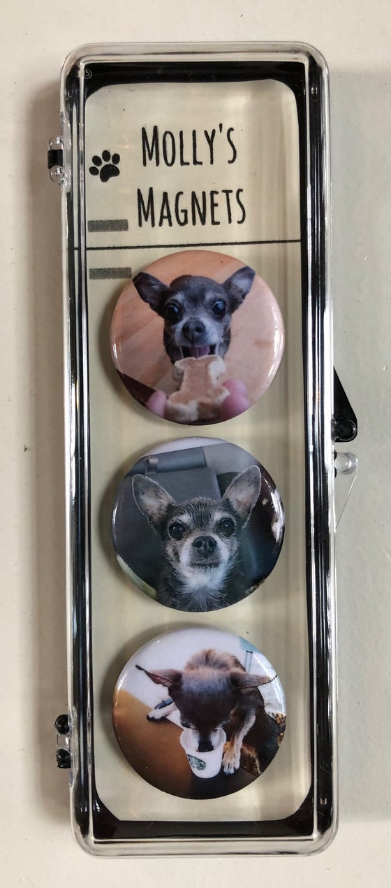 Image of MOLLY'S MAGNETS (F)