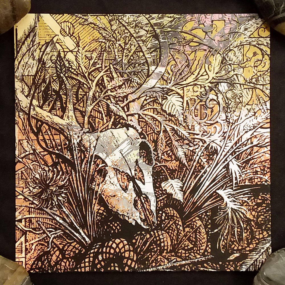 "Image of 'Deer Skull' 6x6"" art print"