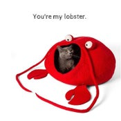 Image of Cat Cave Bed Lobster - Handmade in the category  on UncommonPaws.com