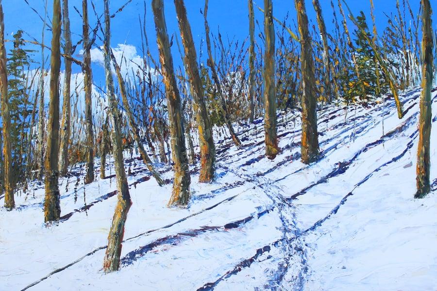 Image of - Winter Life -