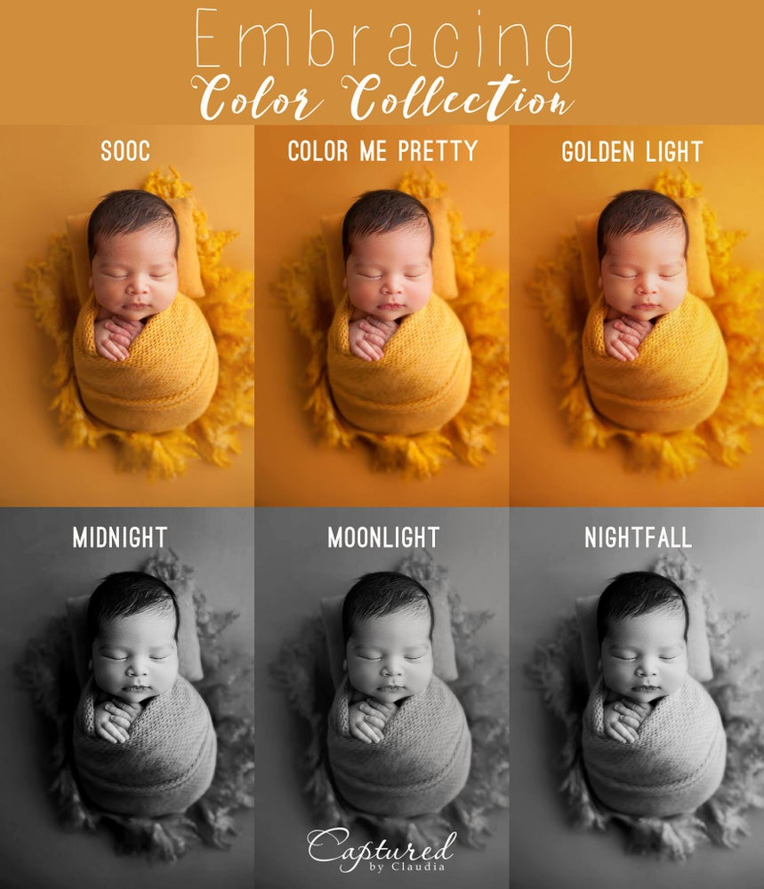 Image of  Embracing Color Collection