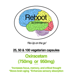 Image of OXIRACETAM (950MG + 750MG OPTION) YOU CHOOSE