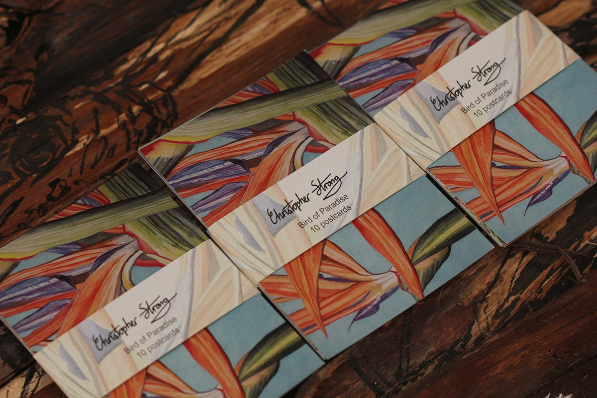 Image of Bird of Paradise Series - pack of 10 postcards