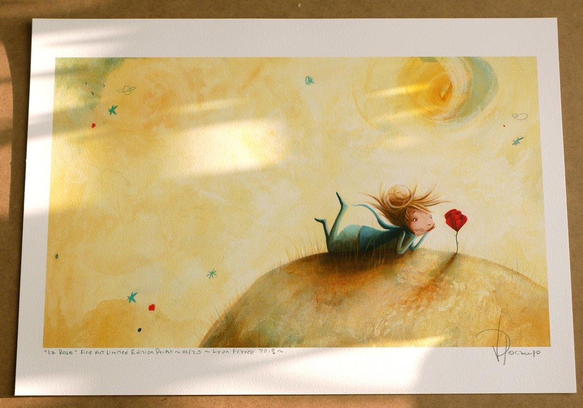 Image of rose - renard