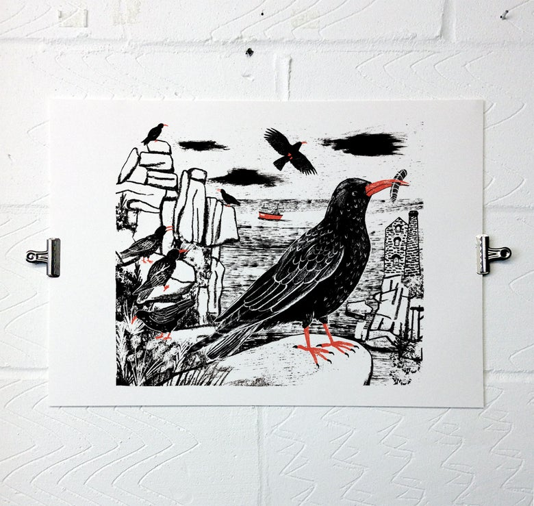 Image of Chough
