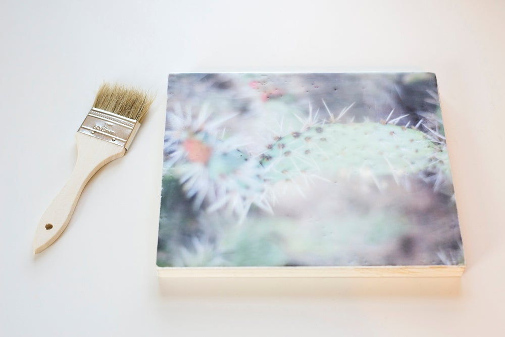 Image of Lovely, a photo & wax workshop- Florals