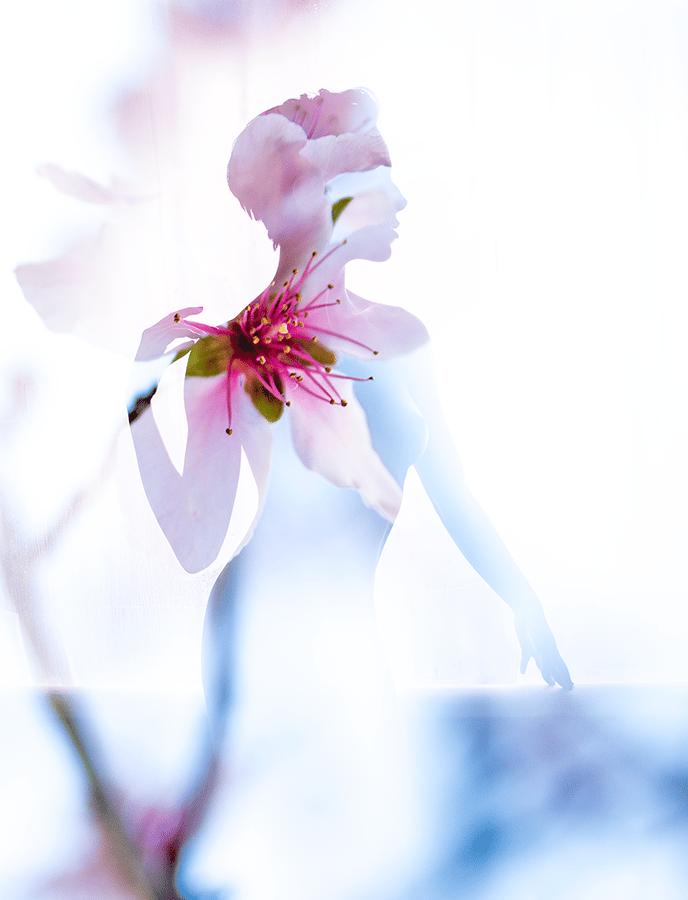 Image of Flora Fae