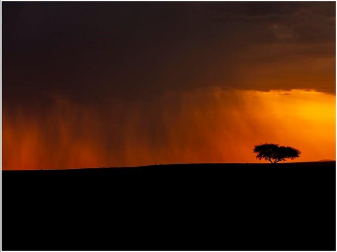 Image of Fotografía: tormenta en el Masai Mara