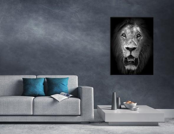 Image of Fotografía: el rey de la sabana