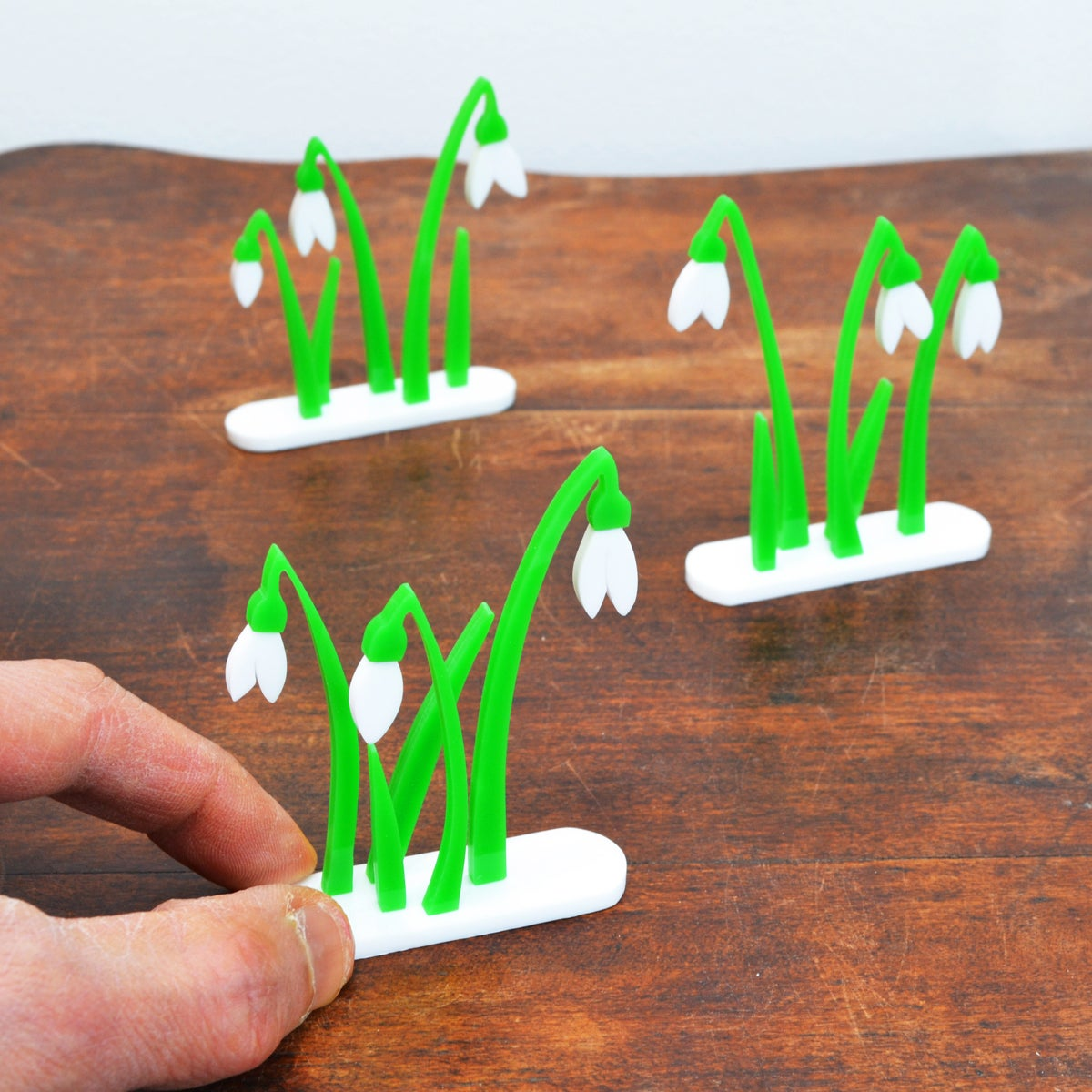 Image of Little Clump of Snowdrops 1 to 3