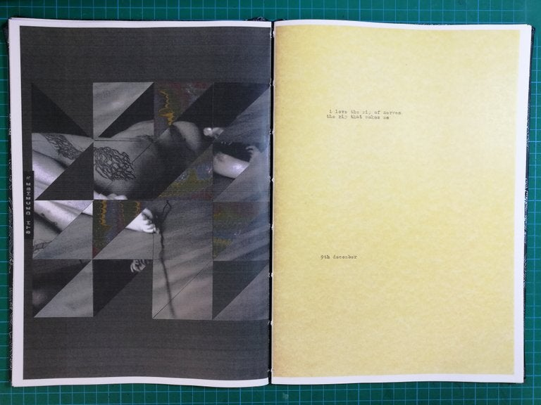 Image of Book of Days - full colour zines