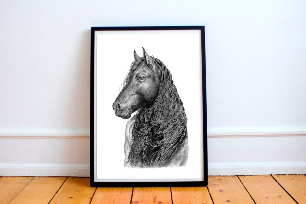 """A Glorious Friesian"". Fine art print of a horse portrait."