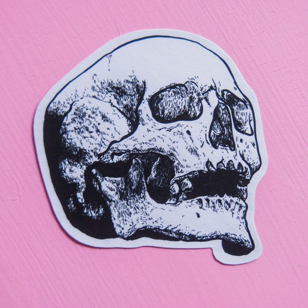 Image of Skull Sticker