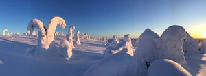 Image of Panoramafoto (Finnisch Lappland)  auf Alu Dibond, kaschiert, 60 cm x 20 cm