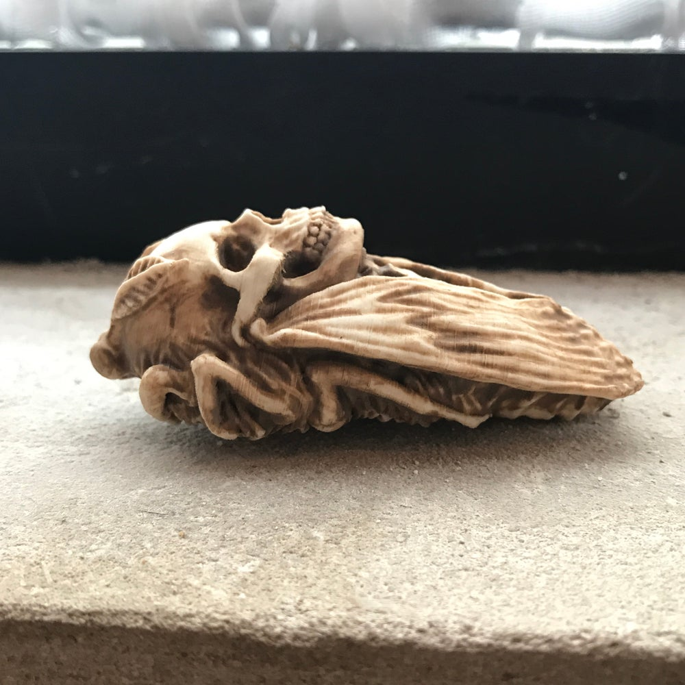 Image of Death's Head Moth Figure