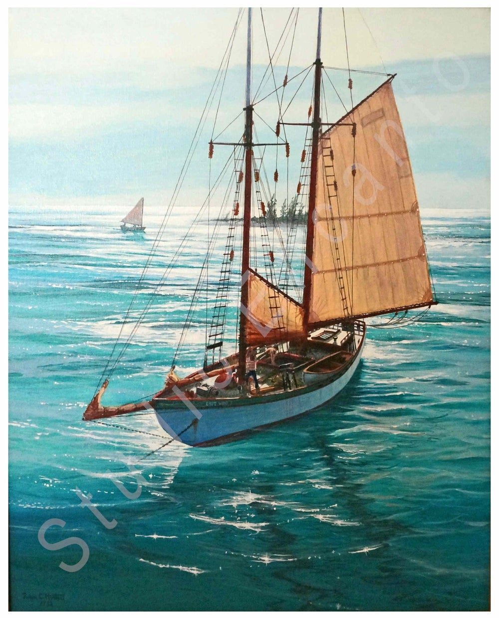 Image of Turtle Schooner at Anchor by Captain Roger C. Horton